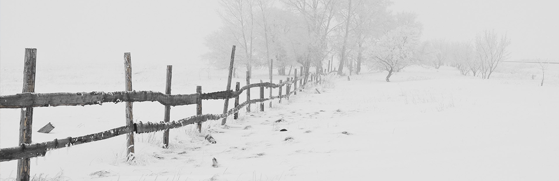 fence-winter